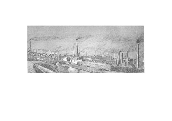 A view of hafod copperworks